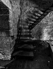 El aparecido (Perurena) Tags: blackandwhite bw blancoynegro stone stairs arquitectura decay escalera biblioteca escada silueta palacio forma abandono piedra pazo peldaos