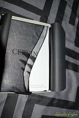 DSC_0876 (Copier) (sebastien colpin) Tags: lingerie bas couture nylon cervin