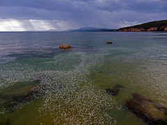 Taroona beach (Simon Grove) Tags: australia tasmania taroona may2016