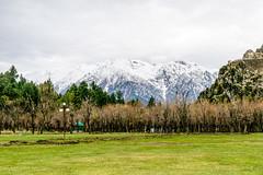 Betab Valley. (Nirmalya Pandit) Tags: travel india mountain snow tree grass kashmir srinagar landskape jammukashmir pahelgam d3300 betabvalley