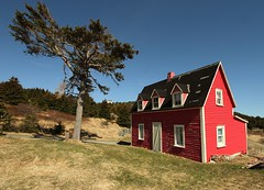 Little Red House (Karen_Chappell) Tags: blue red house canada tree green newfoundland landscape scenery scenic nfld eastcoast cribbies atlanticcanada torscove avalonpeninsula