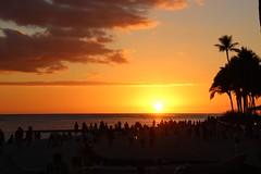 Sunset at Dukes Waikiki.Great (giuseppe schipano) Tags: waikikisunset dukeswaikiki sigma18250 canon600d waikikioutriggerbeachresort