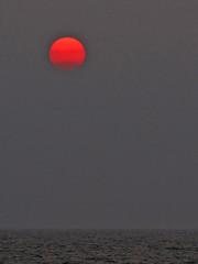 Out of the sun (Silanov) Tags: ocean sunset red sea summer sky sun holland rot beach water netherlands dutch strand evening abend sand meer wasser europa europe waves sonnenuntergang view sommer nederland eu himmel september northsea vista aussicht sonne nordsee graysky seaview ausblick seasideresort strandbad niederlande noordwijk beachwalk sandybeach lateafternoon wellen beachresort zuidholland latesummer 2014 noordwijkerhout meerblick sandstrand seebad overcastsky southholland redsun sptsommer beachstroll strandspaziergang rotesonne hollndisch grauerhimmel noordwijkaanzee coastalresort sptnachmittag searesort badeort bedeckterhimmel sdholland duneandbulbregion germansea duinenbollenstreek floralseasideresort blumenbadeort