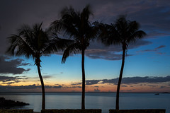 Juan Griego (Rafael Gonzalez V.) Tags: sunset sky love beach clouds palms atardecer twilight sundown gente dusk venezuela palmeras margarita romantic crepusculo ocaso ven anochecer nightfall caribbeansea nuevaesparta juangriego edonuevaesparta