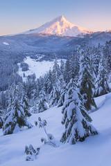 Cold Morning (JustinPoe) Tags: blue trees winter mountain snow cold oregon sunrise volcano mt pacific northwest pass evergreen hood pnw wapinitia