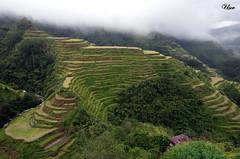 Banaue rice terraces 1 (usov.usov) Tags: rice terraces banaue phillipines