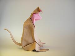 Monkey (Singe) - Nguyen Vo Hien Chuong (Rui.Roda) Tags: monkey mono origami macaco papiroflexia hien nguyen vo chuong singe papierfalten
