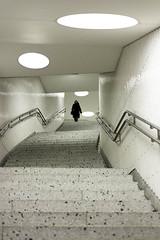 Stairs in Frankfurt (zane) Tags: street stairs strada frankfurt streetphotography