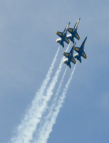 US Navy Flight Demonstration Squadron, the Blue Angels