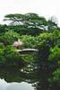 Garden in Shenzhen (Linus Wärn) Tags: china bridge skyscraper garden pond asia guangdong highrise shenzhen themepark windowoftheworld