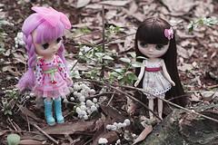 A Magical Girl? (Brie G.) Tags: mushrooms doll blythe takara middie lydiagreen middieblythe puchippuchappupepa middieblythelydiagreen middieblythepuchippuchappupepa