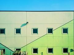 industriality (ale2000) Tags: blue windows urban building verde green lines facade square industrial factory blu edificio row minimal cielo repetition moment azzurro faade c3 finestre linee facciata vsco