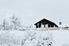 Modern hut (Erik Nikolai Halsteinrud) Tags: winter snow cold nature cabin january norwegian hut icecold