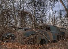 DSC08492.ARW-02 (juice95m3) Tags: abandoned rust vintagecar automobile junkyard oldcars classiccars
