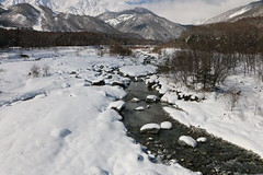 hakuba strollings (Bens-Lens) Tags: sunset beach water sky red flower nature blue night white tree green flowers portrait art light snow dog sun clouds sea ocean lake river pond donaldtrump pussy cloud bridge deer pacific