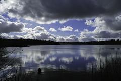 New Camera! (me'nthedogs) Tags: lake reflections somerset reservoir exmoor wimbleball panasonicfz1000