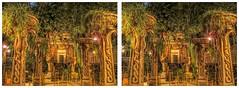 Indiana Jones Adventure (sleightman 3D) Tags: california night stereoscopic stereogram 3d crosseye colorful ride disneyland disney adventure stereo stereoview depth hdr indianajones allrightsreserved hdri stereoscope crossview stereocard 3dphotography hyperstereo sleightman copyrightcarlwilson