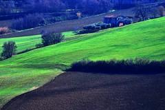 Scorcio marchigiano - Monte San Giusto (luporosso) Tags: italy naturaleza nature landscape landscapes countryside nikon italia country hill natura hills paesaggi marche paesaggio colline scorcio naturalmente scorci pajsage luporosso nikond300s