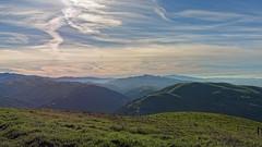 Morning Light (LeftCoastKenny) Tags: trees grass clouds fence hills sierravistaopenspacepreserve