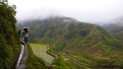 PSX_20160210_185622 (Anna Carmignola) Tags: philippines banaue ifugao riceterraces filippine cambulo