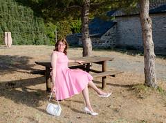 Sitting in the evening sun. (sabine57) Tags: stockings drag tv pumps highheels dress cd crossdressing tgirl transgender tranny transvestite handbag crossdresser crossdress nylons pinkdress travestie transvestism