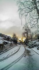 WP_20160318_07_23_08_Raw__highres (madeinfin) Tags: snow sunrise finland helsinki birch kulosaari