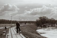 Savska ulica