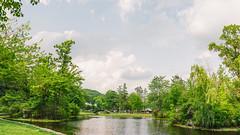 Elm Park (CTPHOTOG) Tags: city bridge trees urban lake water grass ma outside outdoors pond massachusetts worcester perk