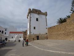 P1030679 (katesoteric) Tags: africa morocco asilah
