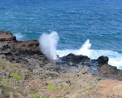 DSC_5708 e5 wo people (J Telljohann) Tags: hawaii waves maui blowhole nakalele mauihighway340