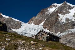 TOUR DU MONT-BLANC - le glacier de la Lex Blanche (mgirard011) Tags: europe it glaciers courmayeur paysages italie lieux tourdumontblanc randonnées valdaoste 200faves valléedaoste glacierdelalexblancheit
