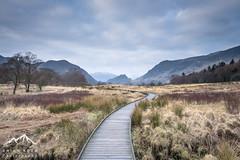 Pathway (.Brian Kerr Photography.) Tags: landscape photography lakes lakedistrict cumbria derwentwater keswick briankerrphotography sonyuk