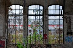 behind the shattered windows (drimhof) Tags: berlin deutschland deu berlinrummelsburg