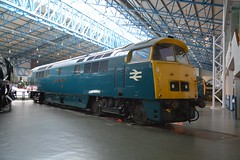 """BR Blue Class 52, 'Whizzo' D1023 """"Western Fusilier"""" (37190 """"Dalzell"""") Tags: york western nrm nationalrailwaymuseum maybach brblue dieselhydraulic class52 d1023 whizzo westernfusileer"""
