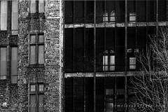 Haunting Buffalo State Asylum for the Insane - Richardson Olmsted Complex, Buffalo, NY (DTD_3206) (masinka) Tags: urban ny newyork photography insane buffalo state cage spooky historical haunting asylum complex chill olmsted richardson etbtsy timelessbuffalo
