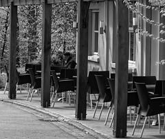 Le vieux lecteur - The old reader (p.franche malade -sick) Tags: park city brussels urban blackandwhite man blanco monochrome europe quiet belgium belgique reader noiretblanc negro snapshot bruxelles panasonic dxo lecture brussel zwart wit parc livre hdr ville schaarbeek schaerbeek homme streetshot  instantan belge schwarzweis mustavalkoinen quitude inbiancoenero svartochvitt flickrelite parcjosaphat josaphatpark  bestofbw fz200  pascalfranche pfranche skancheli