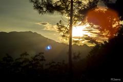 Las Sombras del Atardecer (sierramarcos14695) Tags: travel viaje naturaleza luz solar arboles natural guatemala sombras siluetas montaas aldea huehuetenango explorando canoguitas
