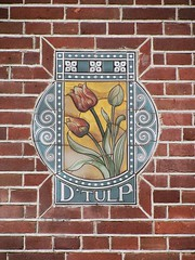 The Tulip (streamer020nl) Tags: flowers holland netherlands amsterdam fleurs bricks nederland blumen tiles tulip nl paysbas bloemen zuid niederlande tulp tegels obrechtstraat 2016 metselwerk tegeltjes 310316 dtulp