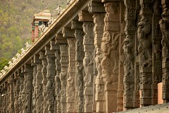 2578 (Atul Sabnis) Tags: temple tiruvannamalai annamalaiyar