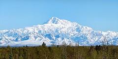 Denali - Alaska (JLS Photography - Alaska) Tags: mountain mountains alaska america landscape landscapes spring scenery outdoor hill mountainside denali beautifulscenery mountainpeaks mountainpeak lastfrontier alaskalandscape jlsphotographyalaska
