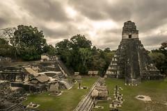 Templo del gran Jaguar - Tikal, Guatemala (Cuernavaca, Morelos Mexico) Tags: park parque flores color nikon guatemala unesco national tikal nubes jaguar acropolis nacional chapin zona templo piramide peten piedra arqueologia humanidad patrimonio arqueologica arqueological precolombina arqueologo d5300