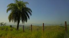 #bike #montain #lg #g4 #brazil #nofilter #tree (Weekend Noise) Tags: brazil tree bike g4 lg montain nofilter