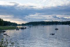 20150717-DSC_1219 (Diahi) Tags: nature finland vuosaari 2015 uutela d7200