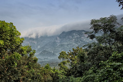 Cloud Covered Wayanad Forests (SivamDesign) Tags: forest canon landscape eos rebel kiss zoom kerala kit wayanad x4 550d 18135mm t2i canonefs18135mmf3556is