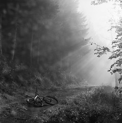 my bike and some accidental double exposure (xbacksteinx) Tags: light bw fall 120 fog analog forest mediumformat blackwhite woods track mood moody kodak path doubleexposure grain foggy mountainbike rays grainy expired blackforest planar trix400 110mm hasselblad2000fcw zeiss110mmf2