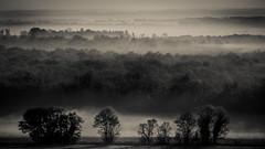 Fog fog fog (Jean-Luc Peluchon) Tags: morning mist france fog mystery forest fort matin mystre fz1000
