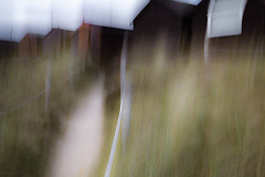 Amongst The Dunes - VI (dthackwell) Tags: abstract blur beach window grass outdoor beachhut icm intentionalcameramovement