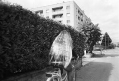 Frosinone, 10/04/2016 (Marcello Iannotta) Tags: film 35mm photography monocromo blackwhite nikon bianco nero kodaktmax400 biancoenero l35af surreale allaperto filmsnotdead