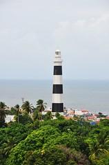 paixo (Ruby Ferreira ) Tags: trees lighthouse farol atlanticocean oceanoatlntico faroldeolinda northeastbrazilian since1872original morrodoserapio since1941current