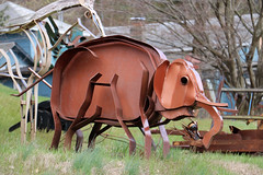 Metal Elephant (jschumacher) Tags: sculpture animals upstate newyorkstate metalsculpture portjervis portjervisnewyork